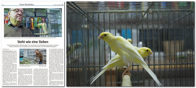 """Den Bericht über Kanrienvogelzüchter Hans Harting (links in der Print-Ansicht) fand Leser S. aus Minden empörend. Rechts """"BossuBelge""""-Kanarien in Ruhestellung. Fotos: MT/Lyrath"""
